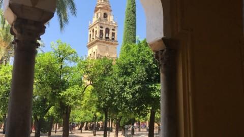 Décoration et art de vivre à l'andalouse…
